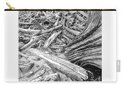 Driftwood Black Cat Carry-all Pouch by Jack Pumphrey