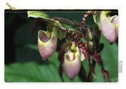 Drippy Lady Slipper Orchids Carry-all Pouch by Sabrina L Ryan