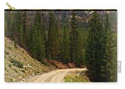 Dubois Mountain Road Carry-all Pouch