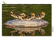 Ducklings Catch Some Rays Carry-all Pouch