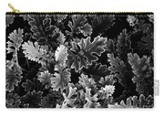 Dusty Miller Bw Carry-all Pouch