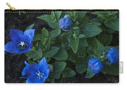 Dwarf Balloon Flower Platycodon Astra Blue 2 Carry-all Pouch