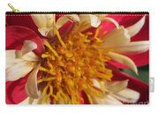 Dwarf Dahlia From The Collarette Dandy Mix Carry-all Pouch