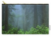 Early Morning In The Forest, Humboldt Carry-all Pouch