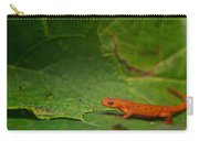 Easterm Newt Nnotophthalmus Viridescens 13 Carry-all Pouch