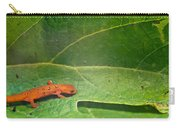 Easterm Newt Nnotophthalmus Viridescens 15 Carry-all Pouch