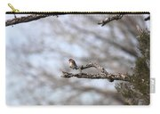 Eastern Bluebird - Old And Alive Carry-all Pouch