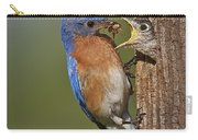 Eastern Bluebird Feeding Chick Carry-all Pouch