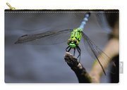 Eastern Pondhawk Carry-all Pouch
