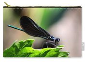 Ebony Jewelwing In The Spotlight Carry-all Pouch