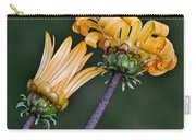 Elegant Daisies Carry-all Pouch