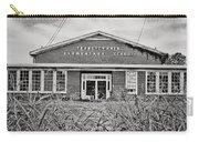 Elementary School Carry-all Pouch by Scott Pellegrin