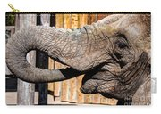 Elephant Feeding Time At The Zoo Carry-all Pouch