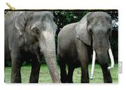 Elephant Meeting Carry-all Pouch