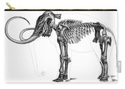 Elephas, Extant Cenozoic Mammal Carry-all Pouch