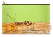 Emerald Ash Borer Parasite Carry-all Pouch by Science Source