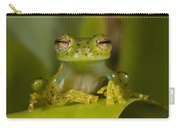 Emerald Glass Frog Centrolene Carry-all Pouch