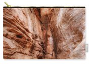 Emerald Pools Trail 4 Carry-all Pouch