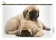 English Mastiff Puppies Carry-all Pouch