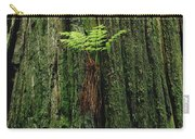Epiphytic Fern Growing On Redwood Carry-all Pouch