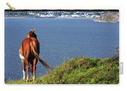 Equine View  Carry-all Pouch
