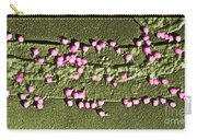 Escherichia Coli On A Cell Wall Carry-all Pouch