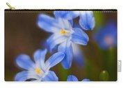 Etoiles Bleus Carry-all Pouch