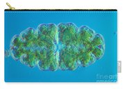 Euastrum Sp. Algae Lm Carry-all Pouch