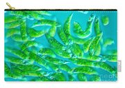Euglena Sp Carry-all Pouch
