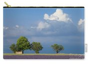 Evening In Provence Carry-all Pouch