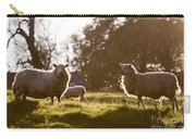 Evening On The Meadow Carry-all Pouch