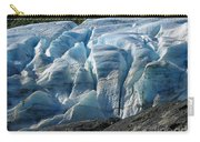 Exit Glacier Viewpoint Carry-all Pouch