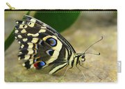 Eye To Eye With A Butterfly Carry-all Pouch