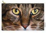 Face Framed Feline Carry-all Pouch by Art Dingo