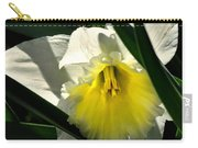 Face The Sun Carry-all Pouch
