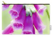 Faerie Bells Carry-all Pouch by Rory Sagner