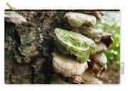Fairy Steps Carry-all Pouch