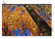 Fall Maple Trees Carry-all Pouch by Elena Elisseeva