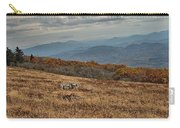 Fall Scene On Whitetop Mountain Va Carry-all Pouch