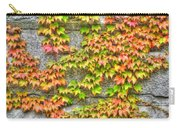 Fall Wall Carry-all Pouch