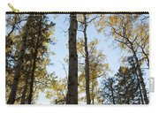 Falling Sunlight Fort Mcmurray Carry-all Pouch