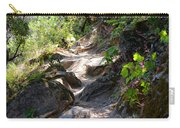 Feather Falls Stairway Carry-all Pouch