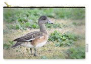 Female American Wigeon  Carry-all Pouch