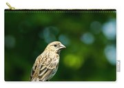 Female House Finch Perched Carry-all Pouch