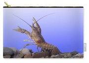 Female Rusty Crayfish Carry-all Pouch