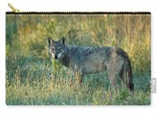 Femle Gray Wolf In The Morning Light Carry-all Pouch