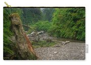 Fern Canyon Trunk Carry-all Pouch