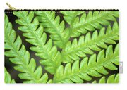 Fern Frond, Detail, Big Island, Hawaii Carry-all Pouch