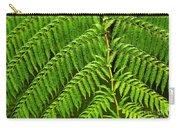 Fern Fronds Carry-all Pouch by Carlos Caetano
