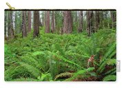 Ferns And Redwoods Carry-all Pouch